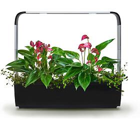 TREGREN T12 Kitchen Garden, chytrý květináč, černý (T12BEU) - Tregren