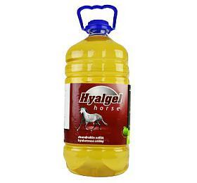 Hyalgel Horse jablko 5l - Hyalgel