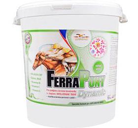 Ferrapony Dynamic 10kg - Orling